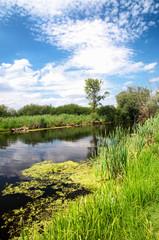 River Zala at Lake Balaton, Hungary