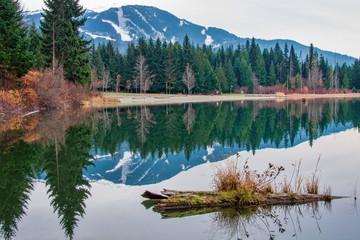 Fotomurales - Lost Lake Log