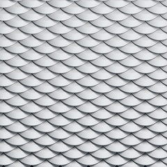 scales snake skin texture