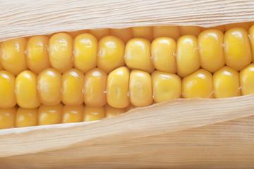 Detalle de los granos de maíz en una mazorca con su vaina