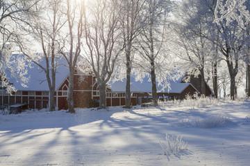 Snowfall in backlit