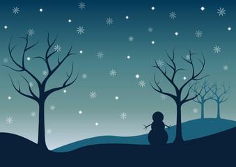 night winter landscape