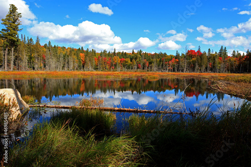 the concept and effects of tourism in algonquin a provincial park in canada