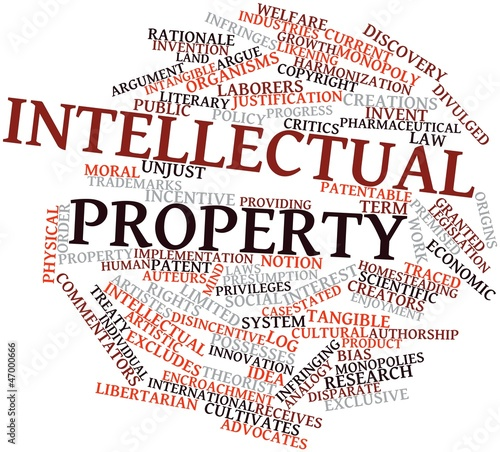 tangible and intellectual property