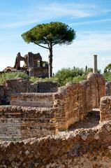 Fototapete - Roman constructions ruins at Villa Adriana