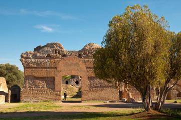 Fototapete - Roman ruins and tree at Villa Adriana