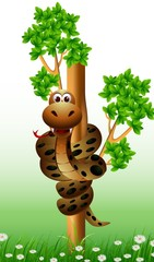 funny snake on the tree