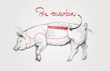 Pork tenderloin / Cuts of pig