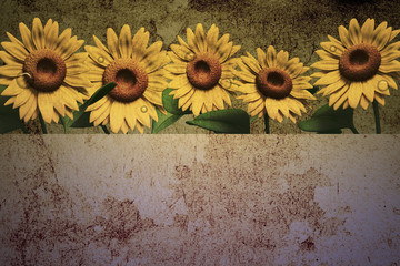 3D Sunflower on texture color background.