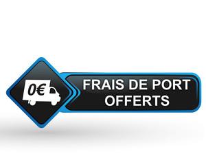 frais de port offerts sur bouton web carré design bleu