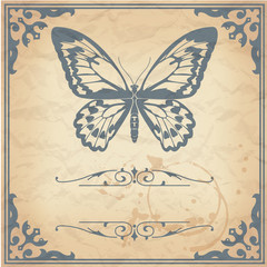 Butterfly on paper background vintage style