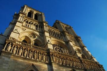 Cattredale di Notre-Dame al tramonto, Parigi, Francia