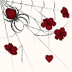 spider and heart