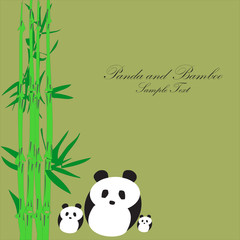 Panda with Bamboo background