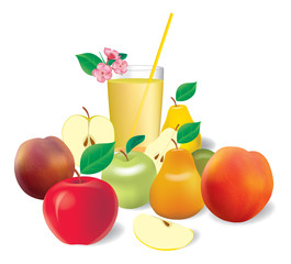 Vector set of realistic fruits with juice