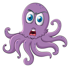an octopus