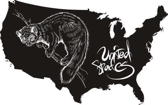 Marten and U.S. outline map