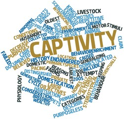 Word cloud for Captivity