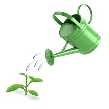 Watering can waters seedling