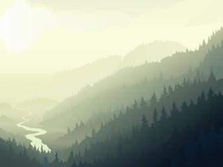 Wild coniferous wood in a morning fog.