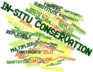 Word cloud for In-situ conservation