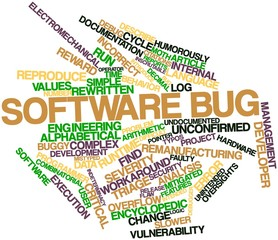 Word cloud for Software bug