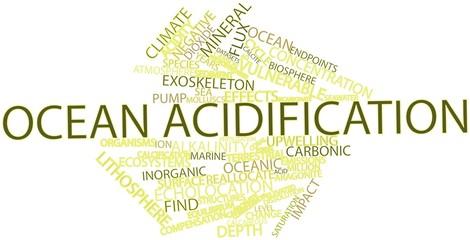 Word cloud for Ocean acidification