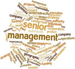 Word cloud for Senior management