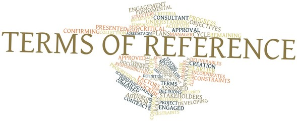 Word cloud for Terms of reference