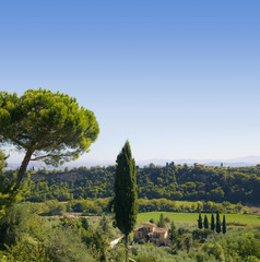 Wall Mural - Tuscany countryside by chianciano terme