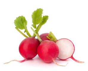 Fototapete - Small garden radish