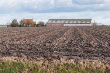 Arable farm in the Netherlands