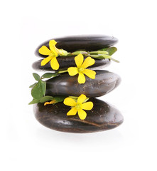 spa stones with yellow flowers isolated