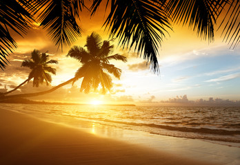 Wall Mural - sunset on the beach of caribbean sea