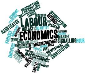 Word cloud for Labour economics