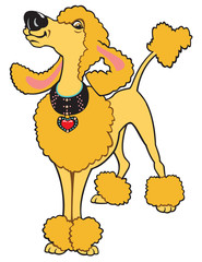 cartoon poodle