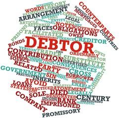 Word cloud for Debtor
