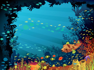 Colored coral reef