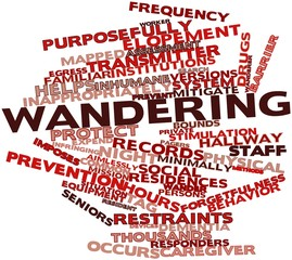 Word cloud for Wandering