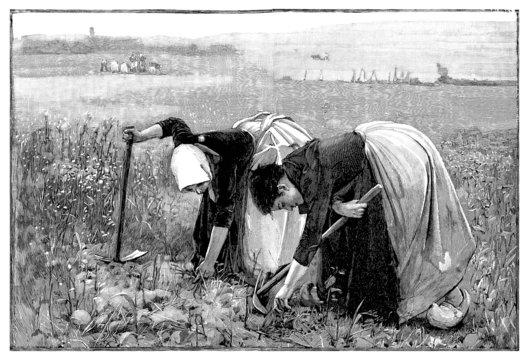 Women : Peasants - Paysannes - 19th century
