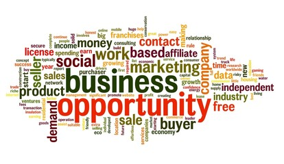 Business opportunity concept in word tag cloud
