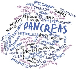 Word cloud for Pancreas