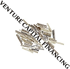 Word cloud for Venture capital financing