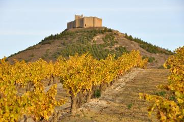 Wall Mural - Viñedos y castillo de Davalillo, La Rioja (España)