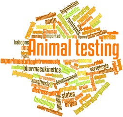 Word cloud for Animal testing