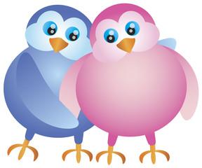 Valentines Day Lovebird Pair Illustration