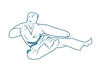 Martial arts fighter