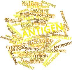 Word cloud for Antigen