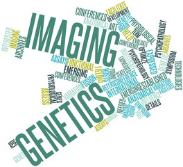 Word cloud for Imaging genetics