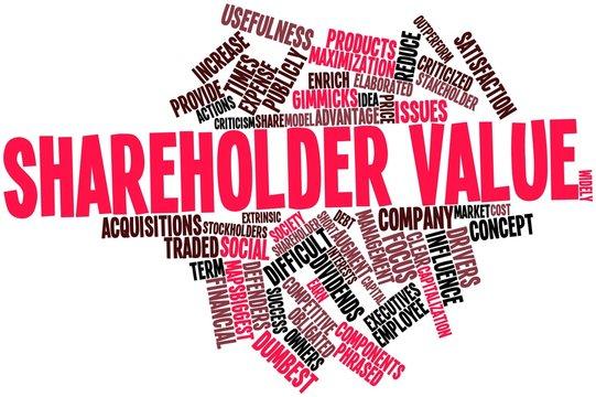 Word cloud for Shareholder value